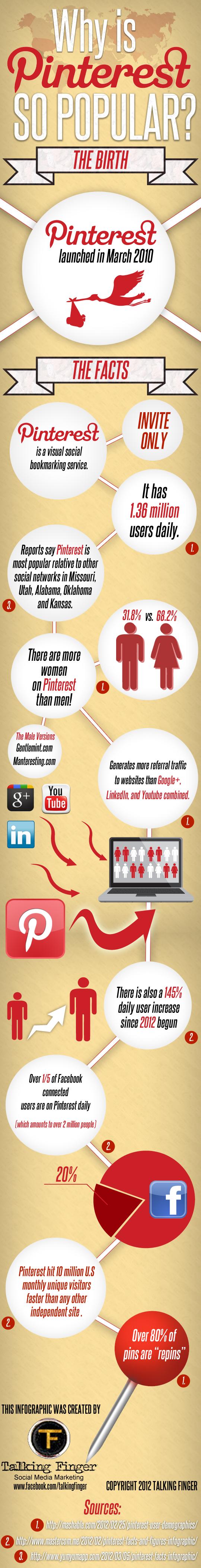 Pinterest infographic 2