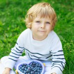 Saurage Research Healthcare Key Findings Blueberries
