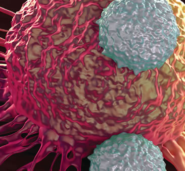 Fighting Cancer With Your Own Cells
